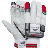 Newbery Excalibur Cricket Gloves (2018)