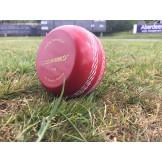 K-Bowl Plastic Cricket Ball