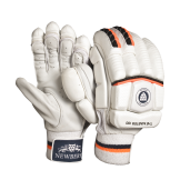 Newbery The Master 100 Cricket Gloves (2020)