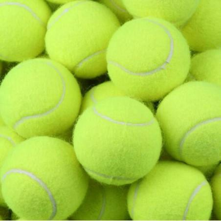 Feed Buddy Tennis Balls (pack of 6)