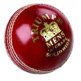 Dukes Triumph 'A' Senior Cricket Ball