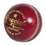 Readers Special School JUNIOR Cricket Ball
