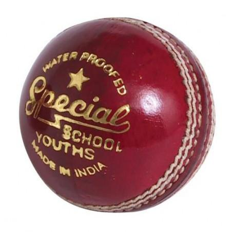 Readers Special School JUNIOR Cricket Ball
