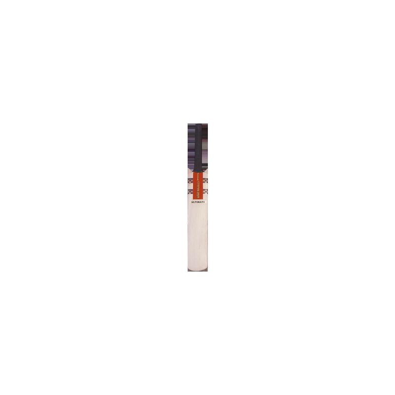 Gray Nicolls Mini Cricket Bat